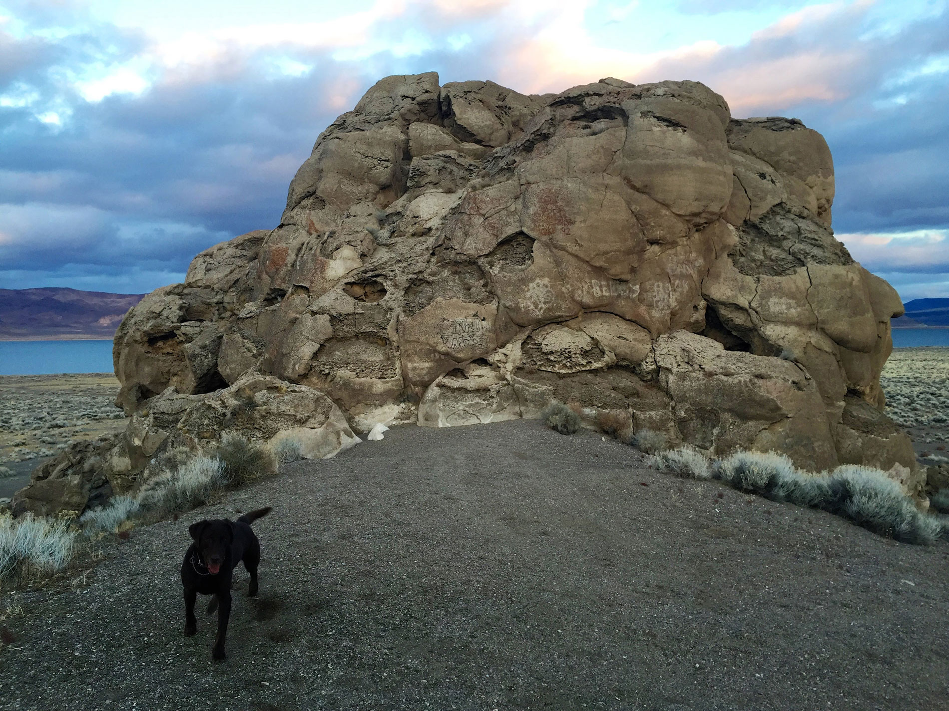Tufa formation with Pyramid Lake in the background and my dog, Neko, in the foreground.